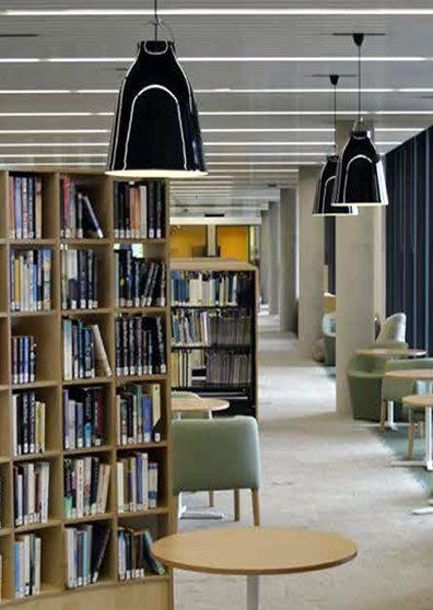 Modern Library Decor Example