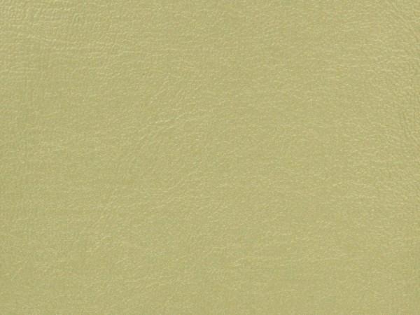Gold Shimmer Vinyl